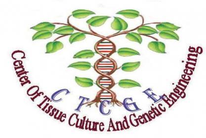 مركز زراعة الأنسجة والهندسة الوراثية يعلن عن بدء برنامج الدورات المهنية التدريبة في زراعة الانسجة لعام 2017 -2018