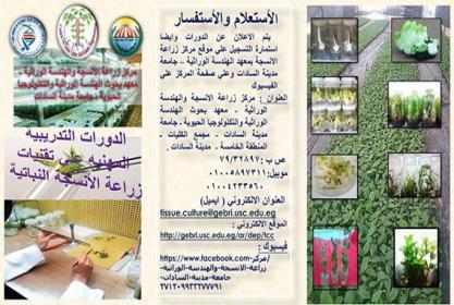 برنامج الدورات المهنيه التدريبة في زراعة الانسجة لعام 2017 -2018