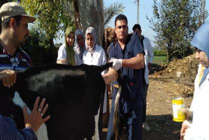 قافلة بيطرية مجانية مقدمه من كلية الطب البيطري، جامعة مدينة السادات