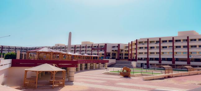 جامعة السادات تتفوق على 456 جامعة في الشرق الأوسط بعد دخولها تصنيف SCIMAGO العالمي للجامعات