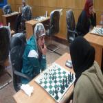 جامعة مدينة السادات تخطف البرونزيه فى الشطرنج سيدات بأسبوع الجامعات الأول بسوهاج